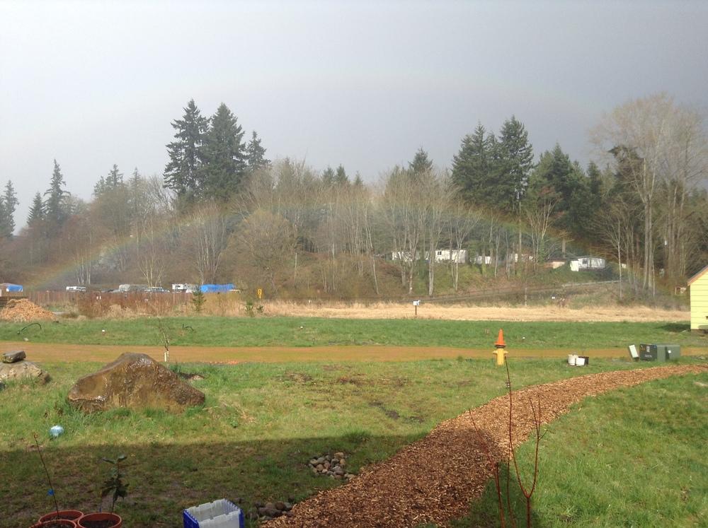 23813383_rainbow2014.JPG