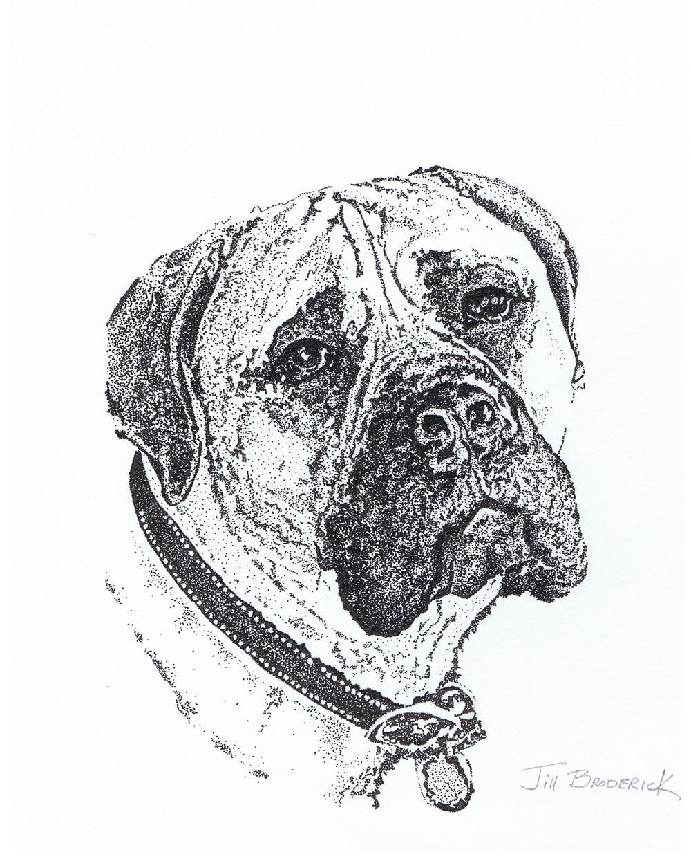 "PUP 2 - PEN AND INK - 11""X14"""