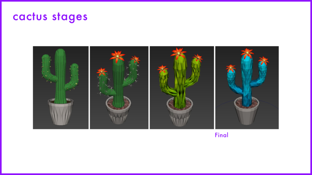 Stages of Design Cactus@3x.png