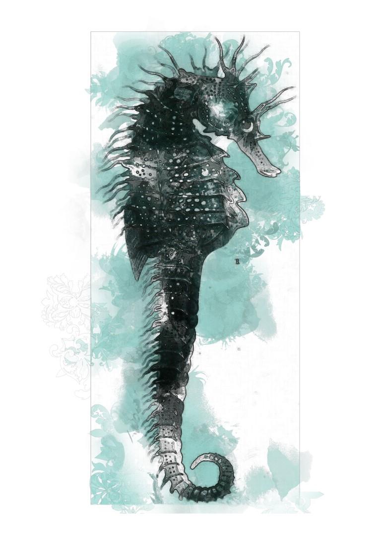 seahorse-3.jpg