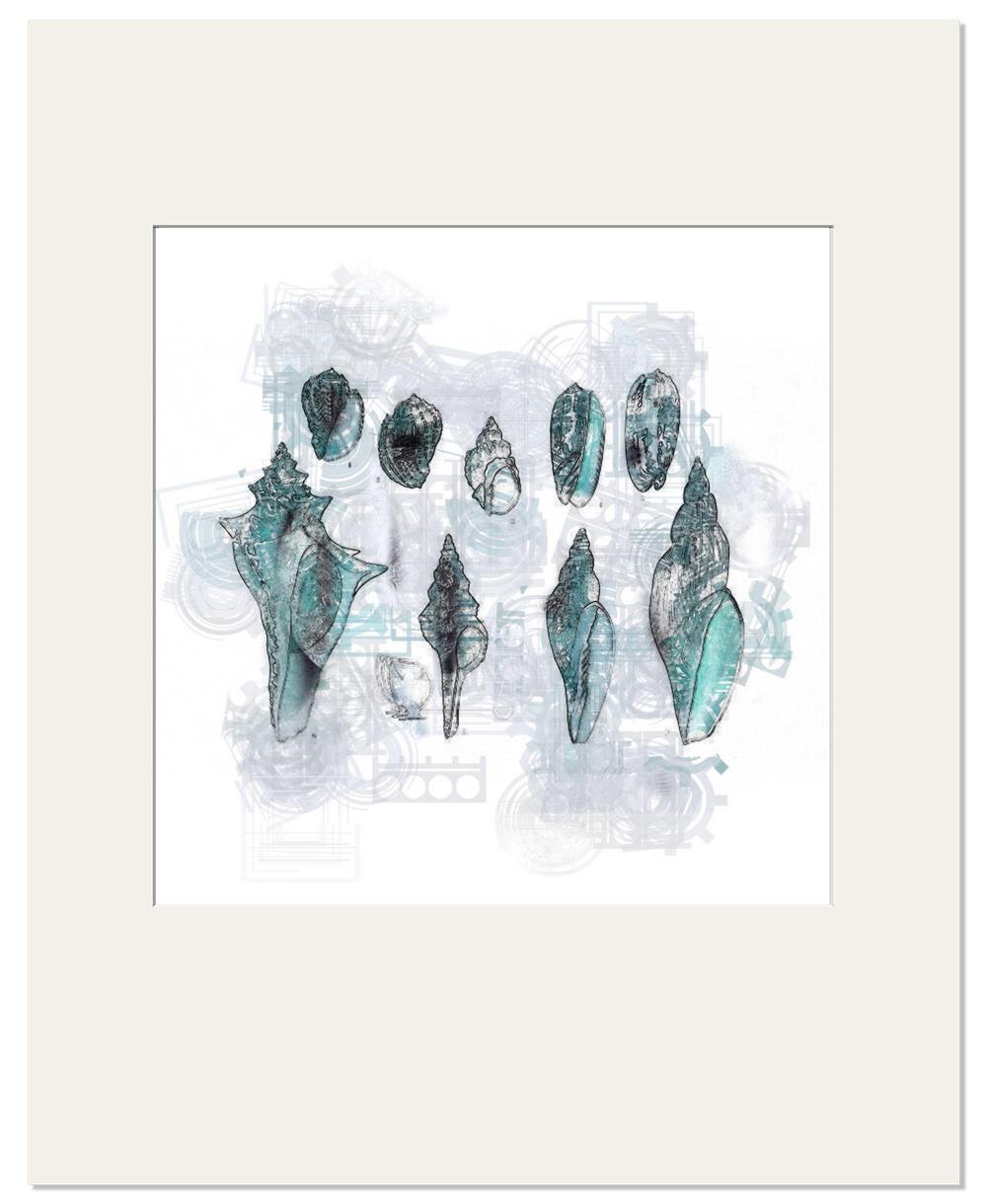 aquatic-print-8.jpg