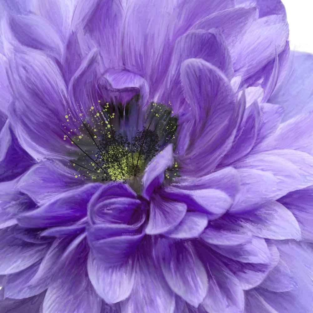 tall purple flower.jpg