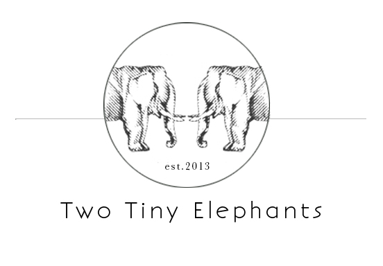 two tiny elephants photography