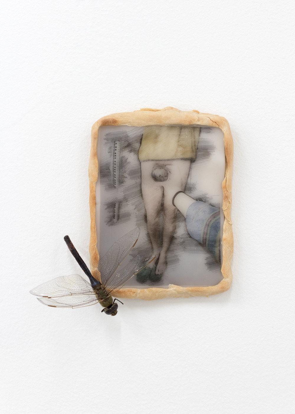 Bio art by Isabelle Frances McGuire