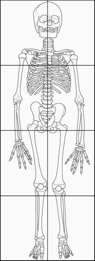 Sizzling image throughout printable skeletons