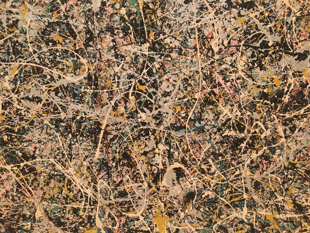 Close up of Pollock, a joy to behold.