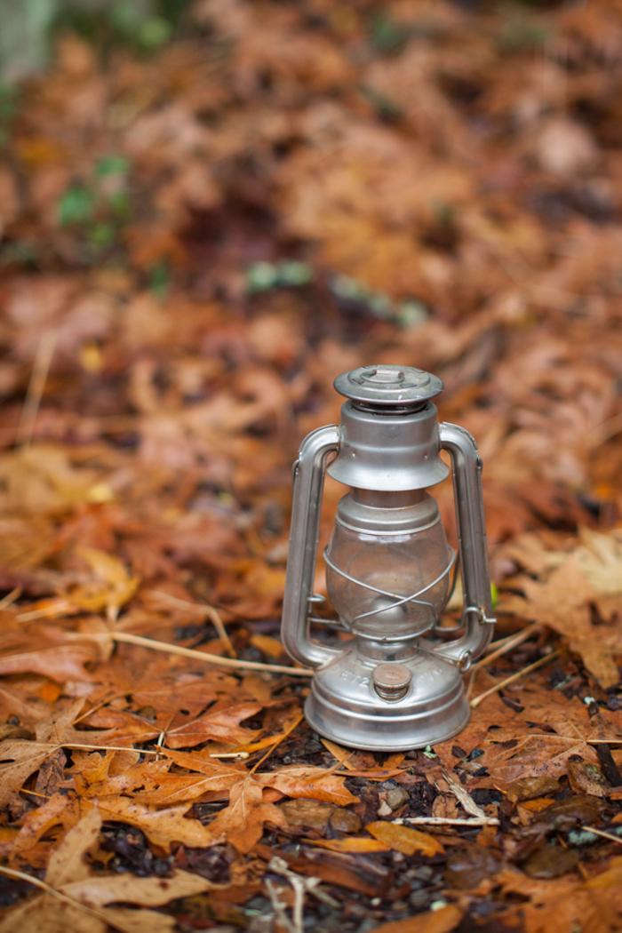 old lantern on forest floor
