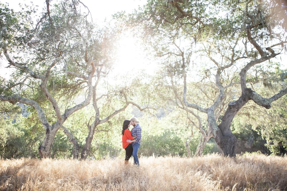 santa ynez oak trees Engagement photo by San Luis Obispo Wedding photographer Skyla Walton