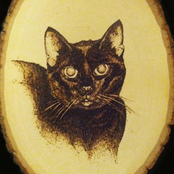 BEVERLY'S CAT 2 NEW.jpg