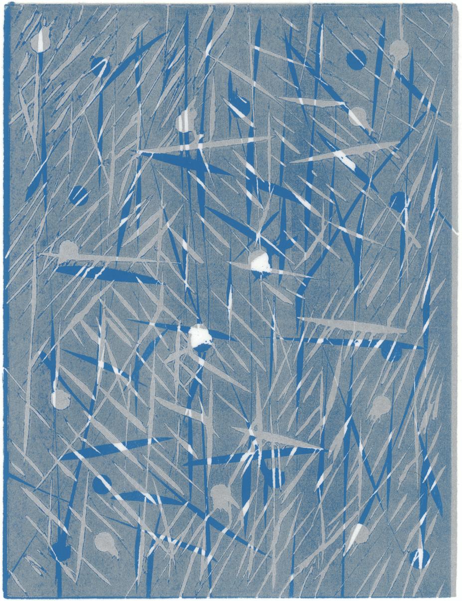 Ice Scars 1