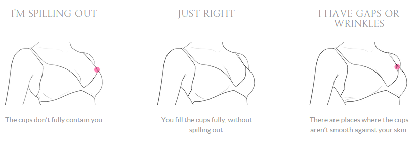 How Does Your Cup Fit? (Image from Victoria's Secret Find Your Perfect Fit Guide)