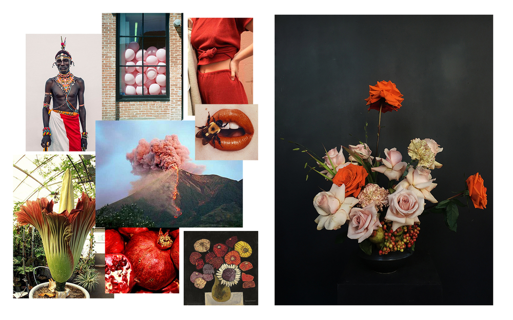 Images from: Dirk Rees • Cactoshop • Irving Penn • Jorg Sasse • Oswaldo Guayasamin
