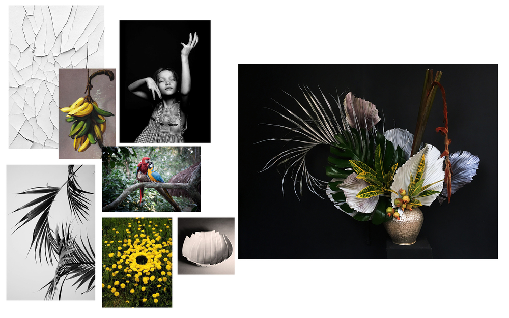 Images from: Francisco Oller • Isadora Duncan • Dieu Van • Andy Goldsworthy • Enzo Mari