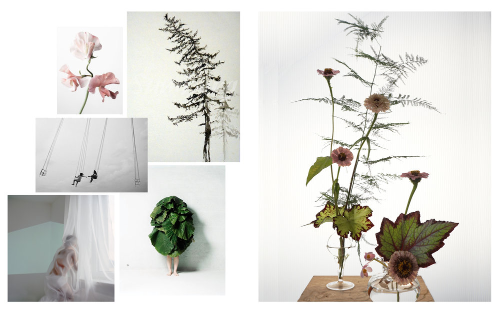 Flowers: Asparagus Fern, Zinnias, Begonia Images from: Robert Ullman • Chris Lamprianidis • Patrice Bruzas • Urszula Kluz-Knopek • Azuma Makoto   *Please contact our studio email should any images be insufficiently credited or not honoring any existing copyrights.