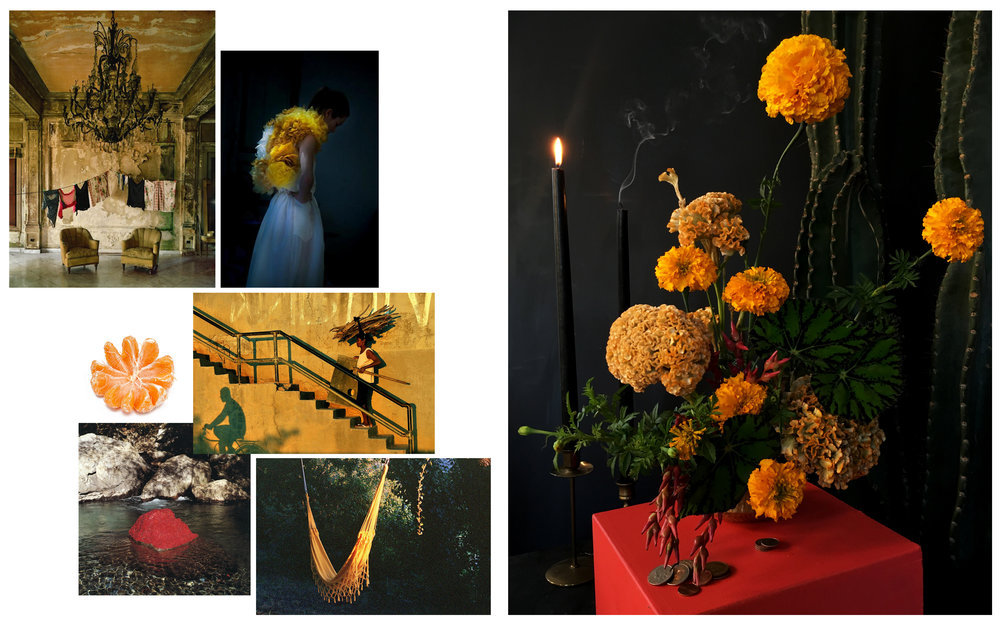 Flowers: Marigolds, Celosia, Bromilead Flower, Begonia Leaf Images from: Michael Eastman • Erik Madigan Heck • Tumblr • João Machado • Andy Goldsworthy