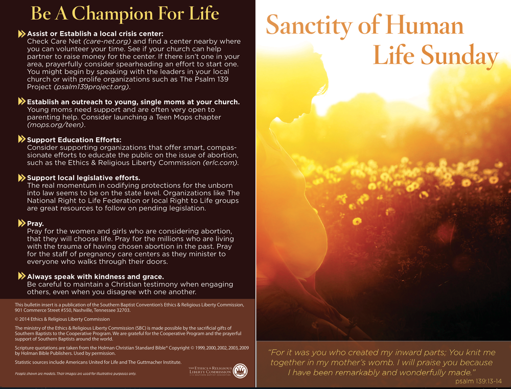 Sample church bulletin insert for Sanctity of Human Life Sunday 2014
