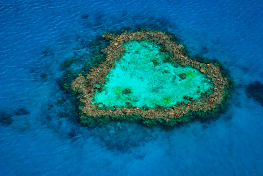 Heart Reef, Great Barrier Reef, Qld