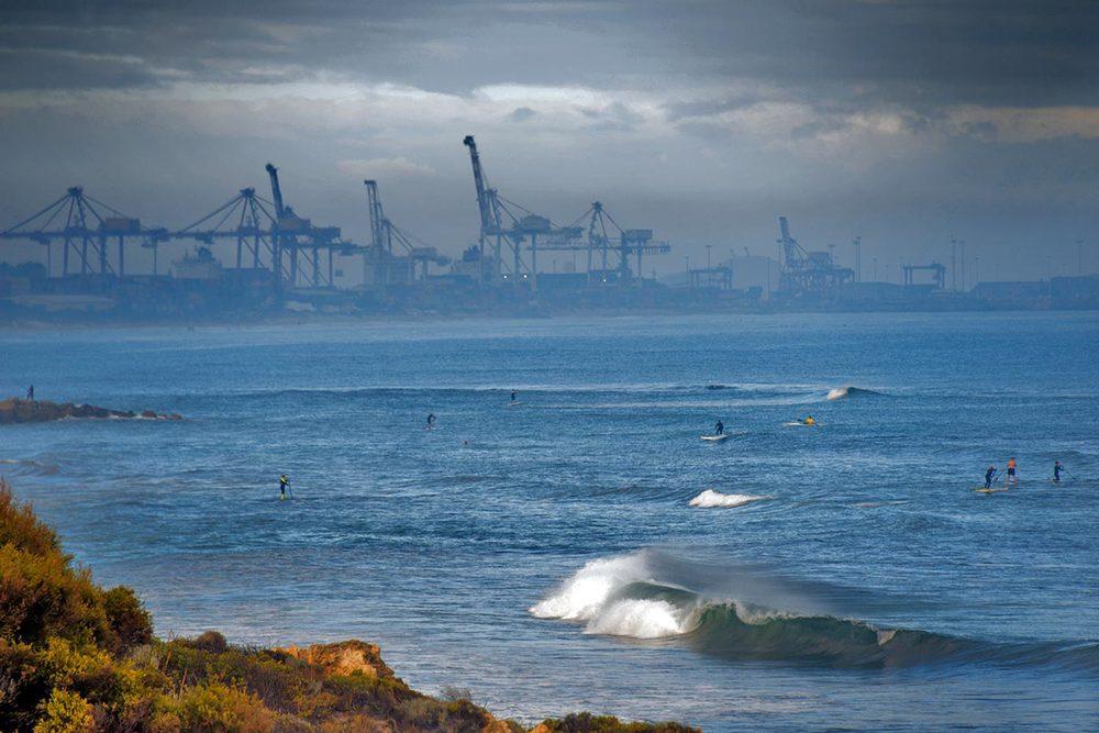 surfing_cranes.jpg