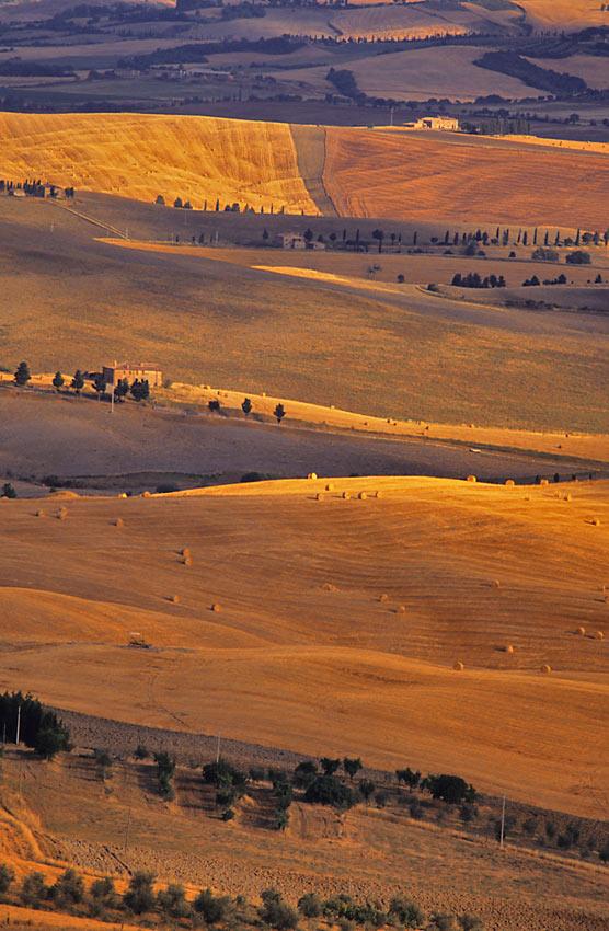 tuscanyfields_port.jpg