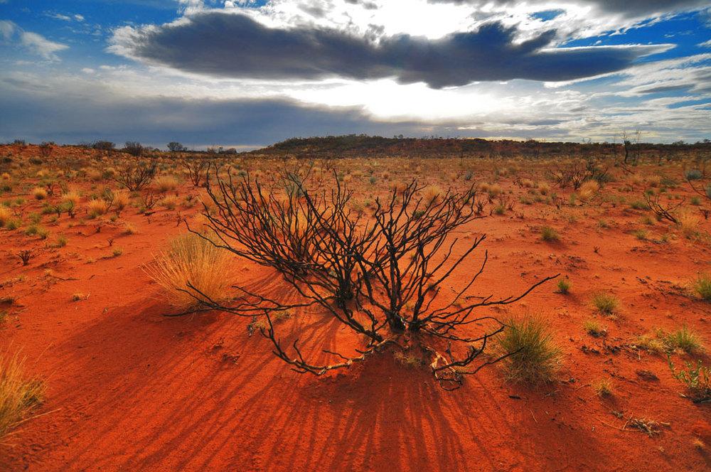 Desert storm-scape