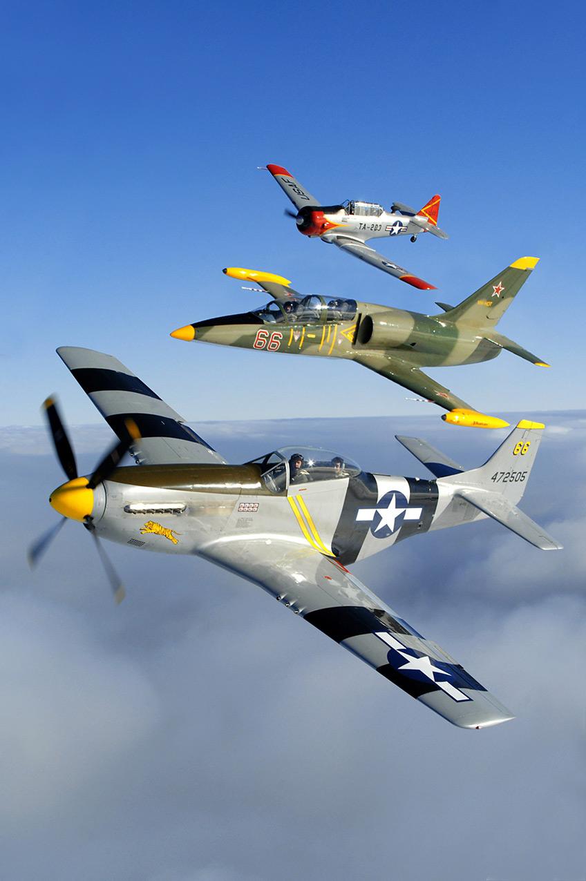 NA P51D Mustang, Aero L39 Albatros, NA T6 Texan