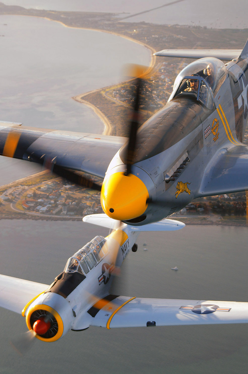 P51D Mustang and T6 Texan