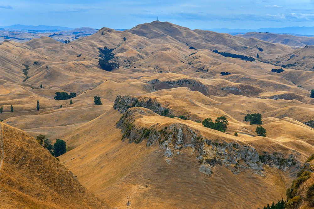 Hawkes Bay landscape from Te Mata Peak