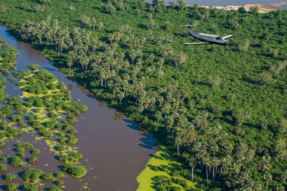 zoe_swamp_aerial.jpg