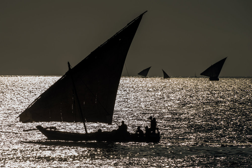 dhows_silhouette.jpg