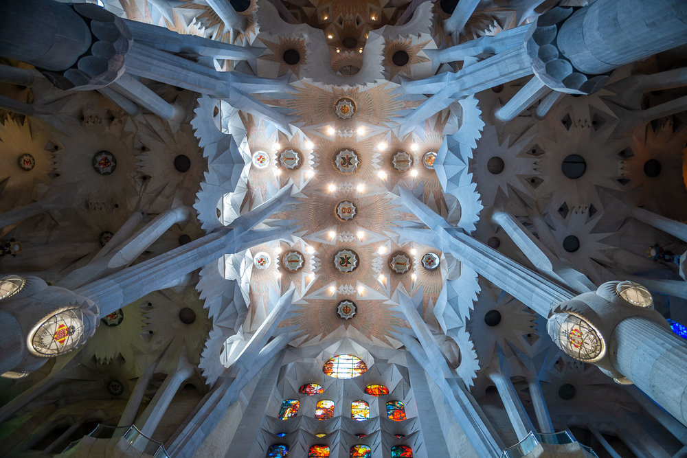 Sagrada ceiling view, Barcelona