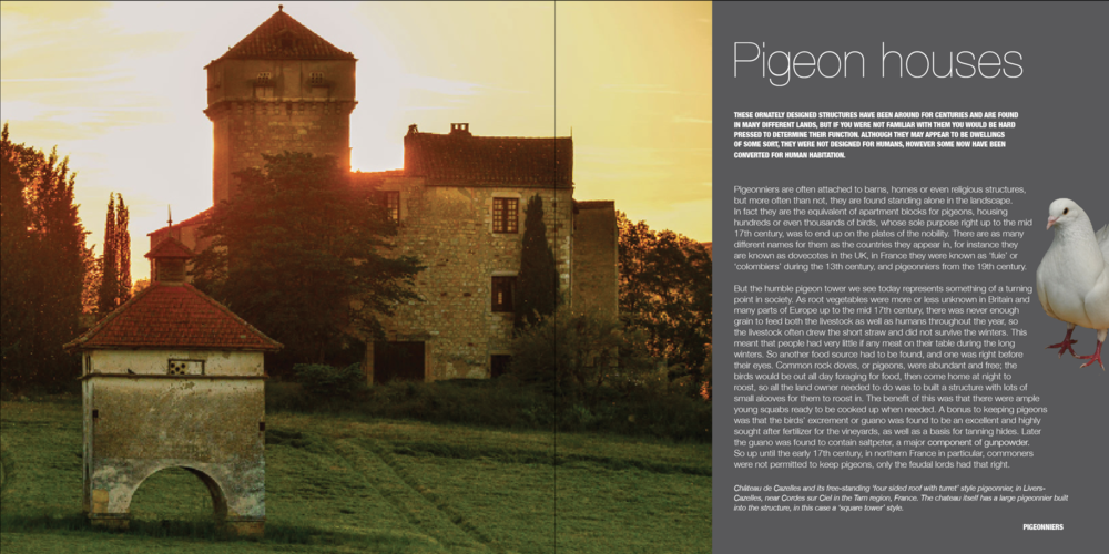 Pigeon houses chapter intro spread