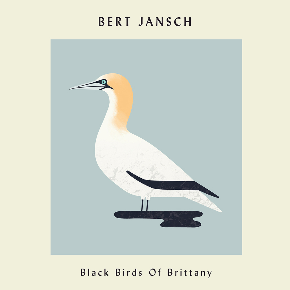 hannah-alice-bert-jansch-blackbirdsofbrittany-record-bird-illustration-square.jpg