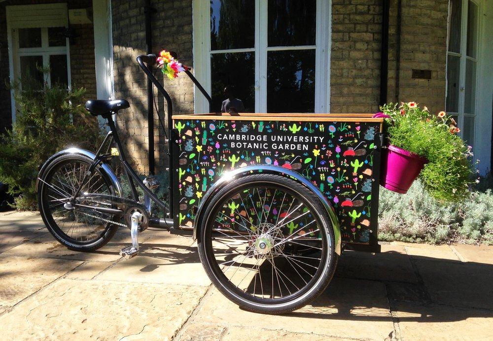 Botanic Bike