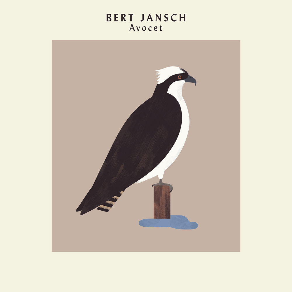 hannah-alice-bert-jansch-osprey-record-bird-illustration-1.jpg