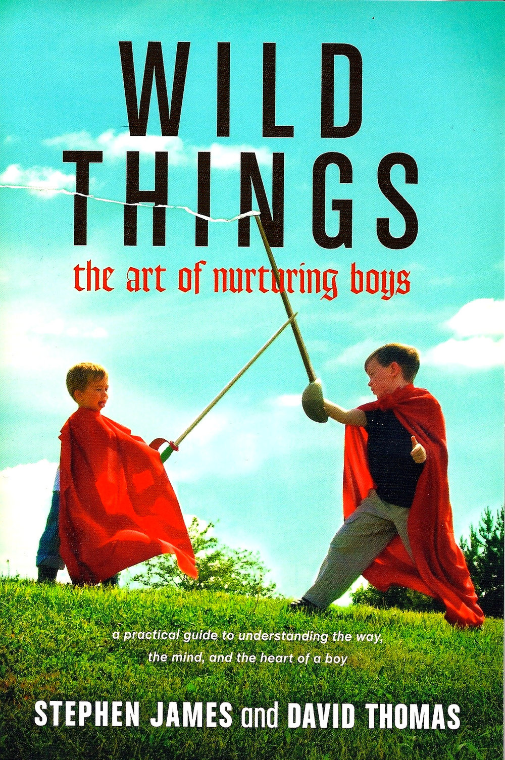 Wild Things cover.jpg