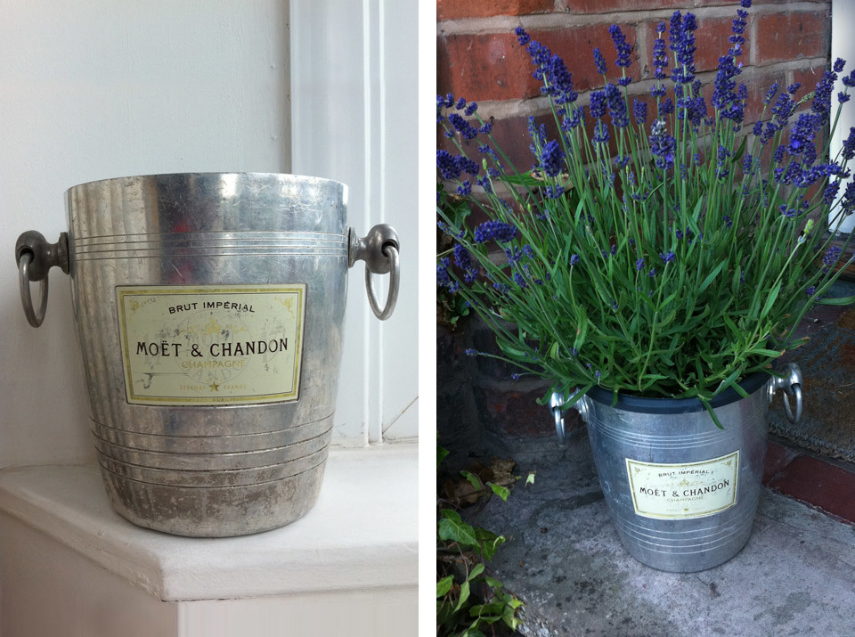 I got these Moët & Chandon champagne buckets in a car boot sale a few years ago, which have made great plant pot holders.