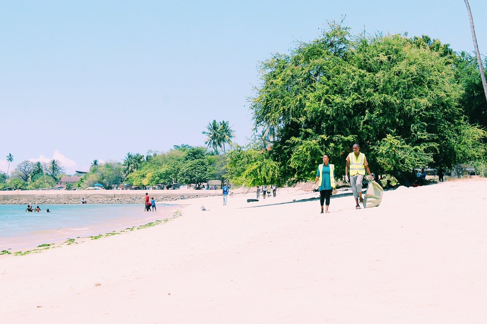 The beach cleanup