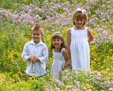 Three kids in a field of flowers.