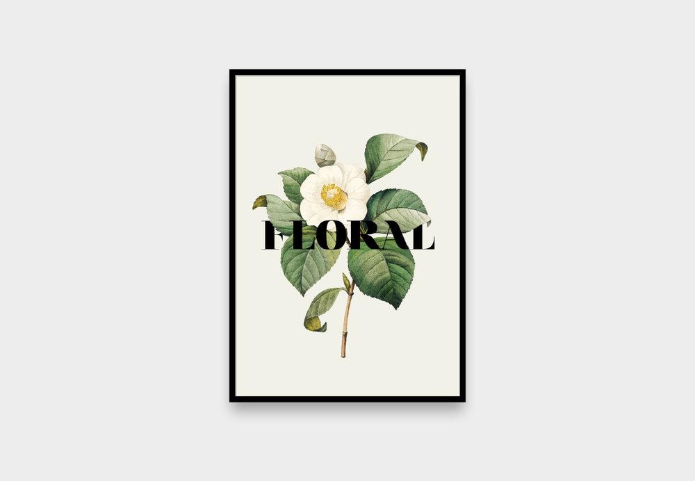 afiches_nuevos_2.jpg