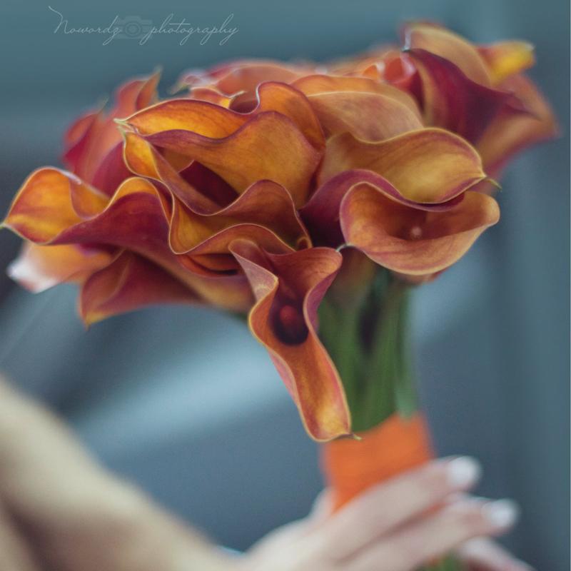 caroline flowers.jpg