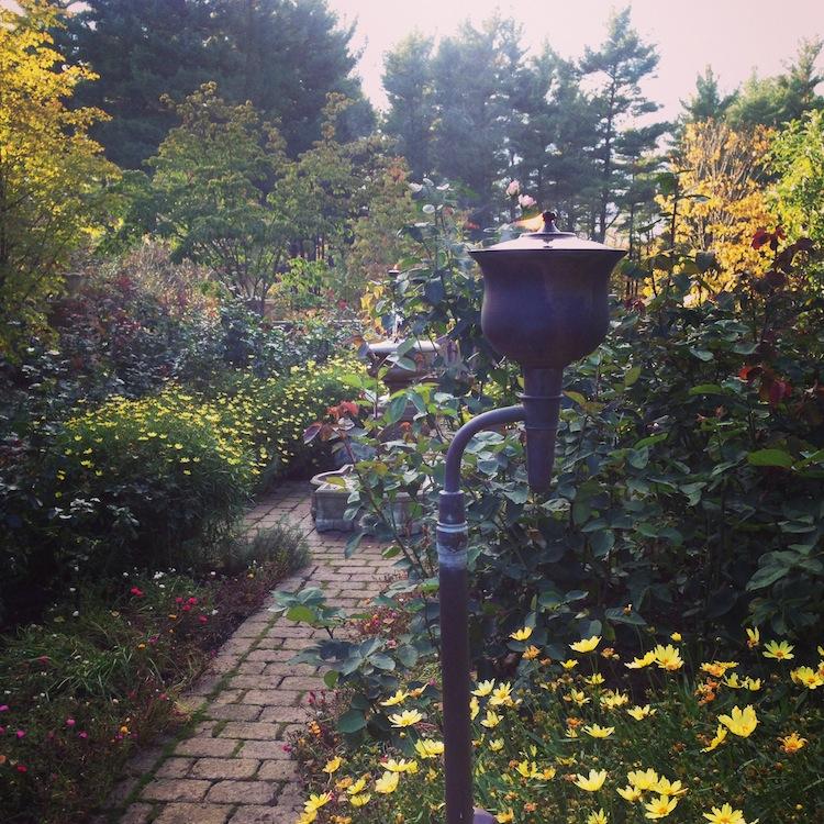 garden4c.JPG