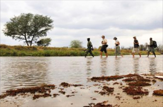 Primal-Pathways-Luangwa-Walking-Safari-River-Crossing.jpg