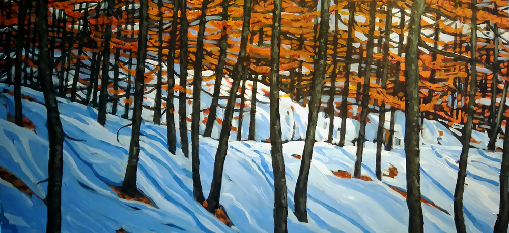 Rock Creek Burn, 36 x 24,  acrylic, $900