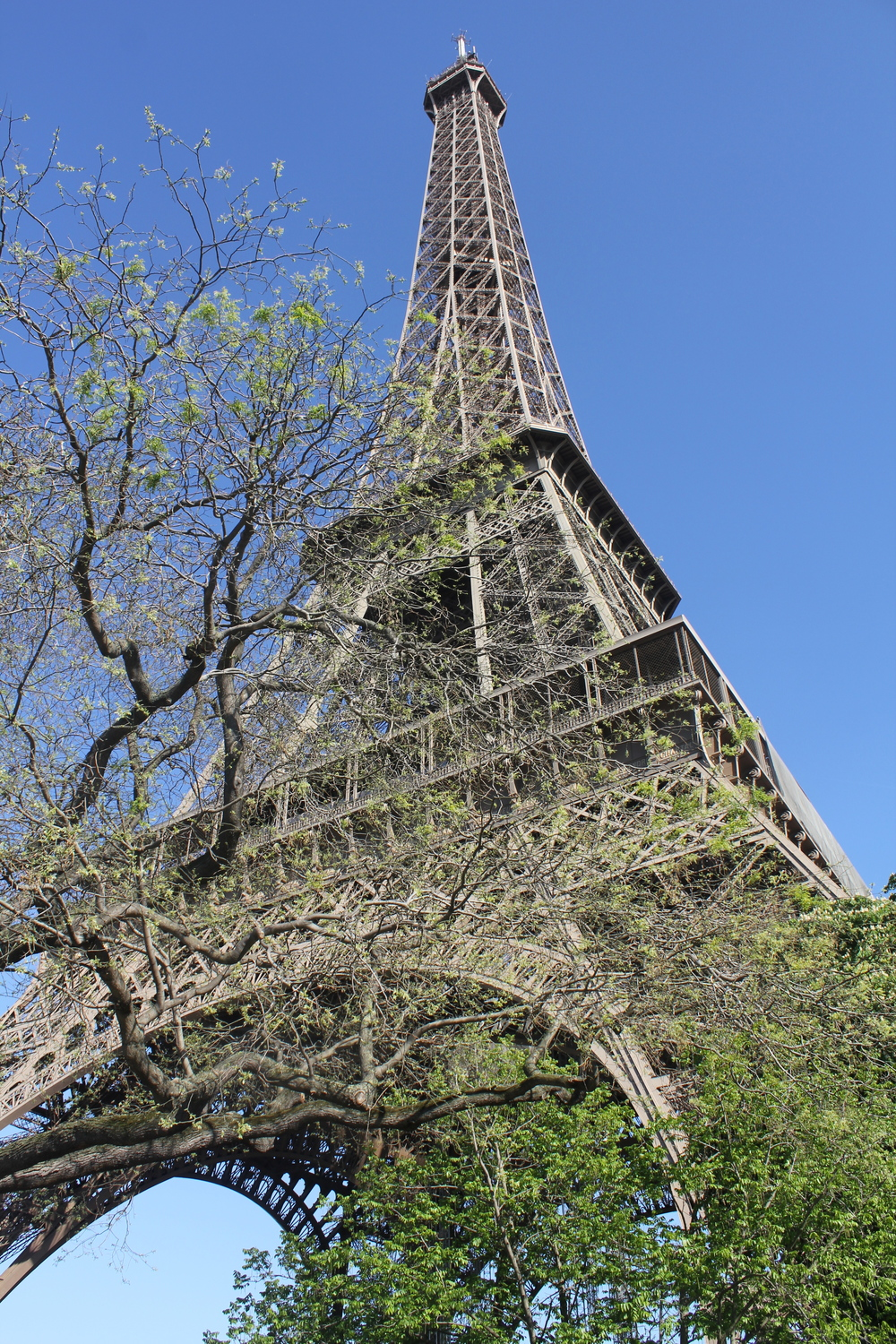 The Eiffel Tower of course