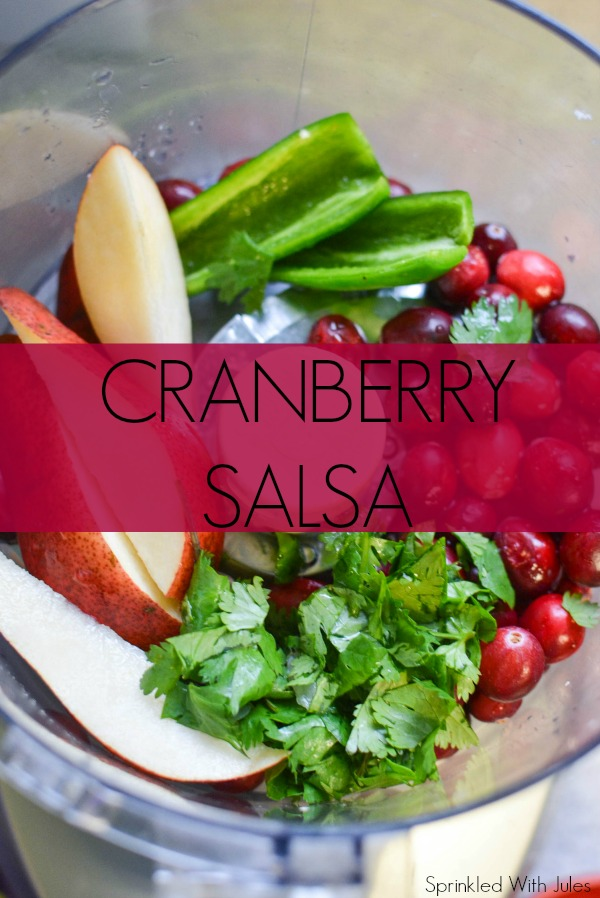 Cranberry Salsa / Sprinkled With Jules