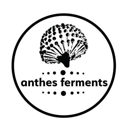 Anthes-Ferments.jpeg.jpg