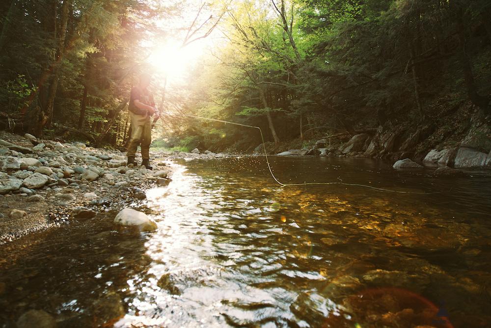 StokeLab Brook Trout-1103.jpg