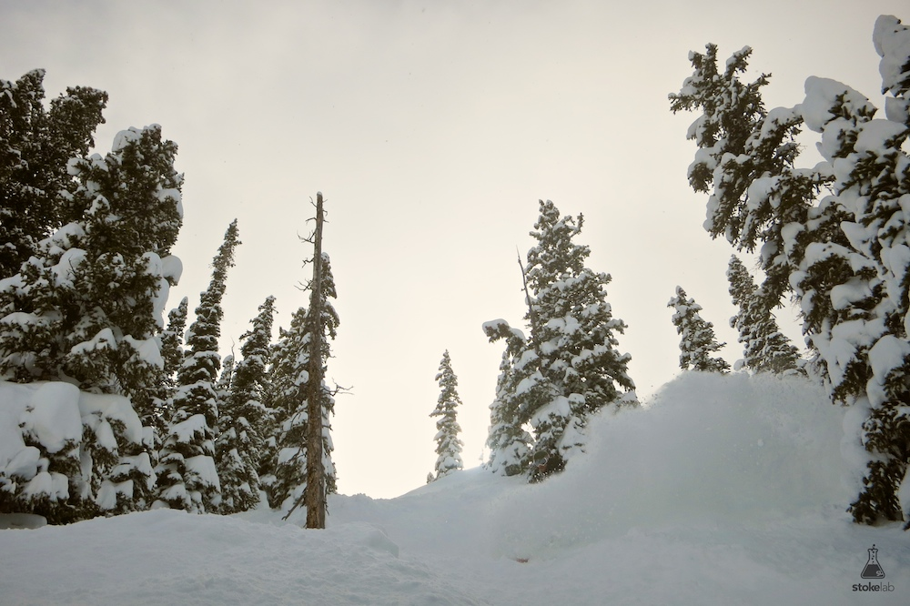Berglund rips a line down Rock and Roll glades.