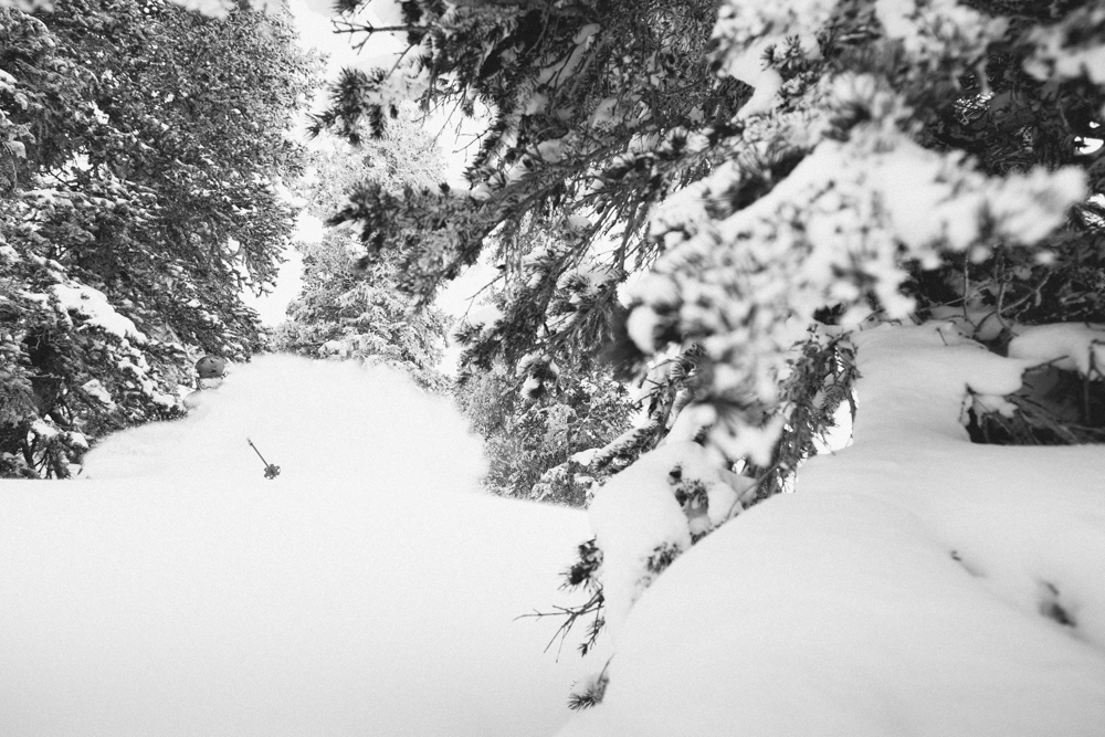 Parker Cook finding the Alta white room in black and white.
