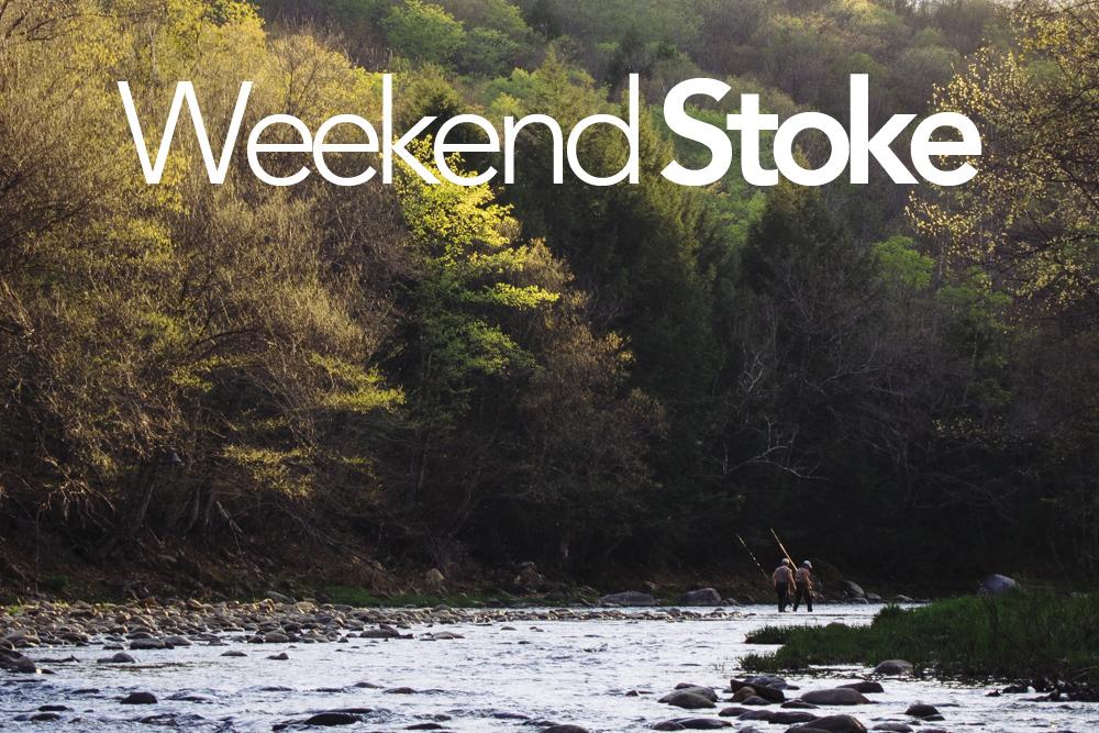 Justin Cash Weekend Stoke.jpg